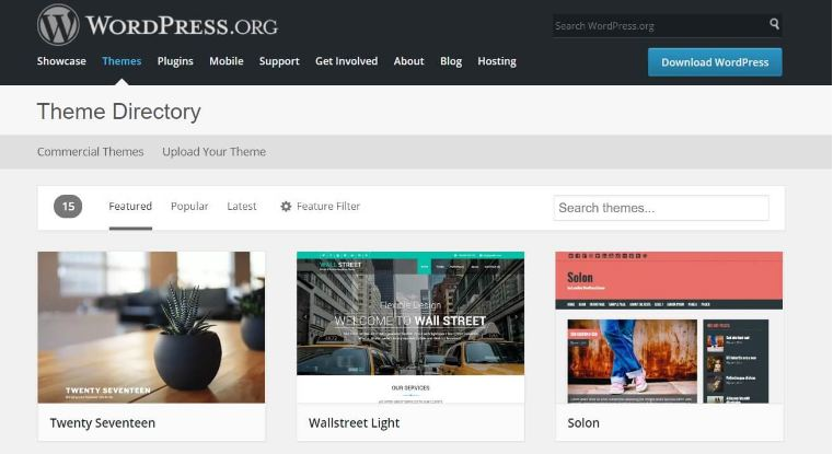 Theme bán hàng wordpress là gì?